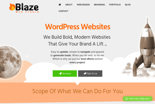 Reasons for Choosing WordPress for Your Business Website - http://blazewebstudio.co.za