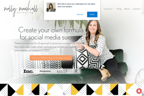 I Tripled My Website Traffic With Pinterest Marketing  - http://mollymarshallmarketing.com